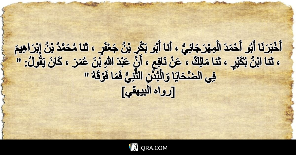 """أَخْبَرَنَا أَبُو أَحْمَدَ الْمِهْرَجَانِيُّ ، أنا أَبُو بَكْرِ بْنُ جَعْفَرٍ ، ثنا مُحَمَّدُ بْنُ إِبْرَاهِيمَ ، ثنا ابْنُ بُكَيْرٍ ، ثنا مَالِكٌ ، عَنْ نَافِعٍ ، أَنَّ عَبْدَ اللهِ بْنَ عُمَرَ ، كَانَ يَقُولُ: """" فِي الضَّحَايَا وَالْبُدْنِ الثَّنِيُّ فَمَا فَوْقَهُ """" <br> [رواه البيهقي]"""