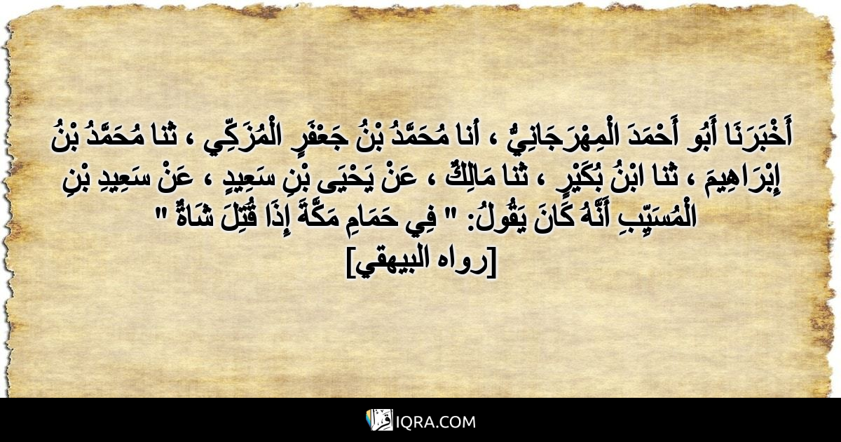 """أَخْبَرَنَا أَبُو أَحْمَدَ الْمِهْرَجَانِيُّ ، أنا مُحَمَّدُ بْنُ جَعْفَرٍ الْمُزَكِّي ، ثنا مُحَمَّدُ بْنُ إِبْرَاهِيمَ ، ثنا ابْنُ بُكَيْرٍ ، ثنا مَالِكٌ ، عَنْ يَحْيَى بْنِ سَعِيدٍ ، عَنْ سَعِيدِ بْنِ الْمُسَيِّبِ أَنَّهُ كَانَ يَقُولُ: """" فِي حَمَامِ مَكَّةَ إِذَا قُتِلَ شَاةٌ """" <br> [رواه البيهقي]"""