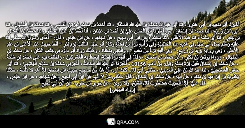 """أَخْبَرَنَا أَبُو سَعِيدِ بْنُ أَبِي عَمْرٍو ، ثنا أَبُو عَبْدِ اللهِ مُحَمَّدُ بْنُ عَبْدِ اللهِ الصَّفَّارُ ، ثنا أَحْمَدُ بْنُ مُحَمَّدٍ الْبِرْتِيُّ الْقَاضِي ، ثنا مُحَمَّدُ بْنُ الْمِنْهَالِ ، ثنا يَزِيدُ بْنُ زُرَيْعٍ ، ثنا مُحَمَّدُ بْنُ إِسْحَاقَ ، ح وَأَخْبَرَنَا أَبُو الْحَسَنِ عَلِيُّ بْنُ أَحْمَدَ بْنِ عَبْدَانَ ، أنا أَحْمَدُ بْنُ عُبَيْدٍ الصَّفَّارُ ، ثنا مُحَمَّدُ بْنُ الْفَضْلِ بْنِ جَابِرٍ ، ثنا أَبُو سَلَمَةَ ، ثنا عَبْدُ الْأَعْلَى ، ثنا مُحَمَّدٌ ، عَنِ ابْنِ أَبِي نَجِيحٍ ، عَنْ مُجَاهِدٍ ، عَنِ ابْنِ عَبَّاسٍ ، قَالَ: """" أَهْدَى رَسُولُ اللهِ صَلَّى اللهُ عَلَيْهِ وَسَلَّمَ جَمَلَ أَبِي جَهْلٍ فِي هَدْيِهِ عَامَ الْحُدَيْبِيَةِ وَفِي رَأْسِهِ بُرَةٌ مِنْ فِضَّةٍ وَكَانَ أَبُو جَهْلٍ اسْتُلِبَ يَوْمَ بَدْرٍ """" لَفْظَ حَدِيثِ عَبْدِ الْأَعْلَى بْنِ عَبْدِ الْأَعْلَى ، وَفِي رِوَايَةِ يَزِيدَ بْنِ زُرَيْعٍ: """" وَفِي أَنْفِهِ بُرَةٌ مِنْ ذَهَبٍ """" ، وَالْبَاقِي بِمَعْنَاهُ ، وَكَذَلِكَ رَوَاهُ أَبُو دَاوُدَ فِي كِتَابِ السُّنَنِ ، عَنْ مُحَمَّدِ بْنِ الْمِنْهَالِ ، وَرَوَاهُ يُونُسُ بْنُ بُكَيْرٍ ، عَنْ مُحَمَّدِ بْنِ إِسْحَاقَ ، وَقَالَ فِي أَنْفِهِ بُرَةُ فِضَّةٍ؛ لِيَغِيظَ بِهِ الْمُشْرِكِينَ ، وَاخْتُلِفَ فِيهِ عَلَى مُحَمَّدِ بْنِ سَلَمَةَ ، عَنْ مُحَمَّدِ بْنِ إِسْحَاقَ فَقِيلَ بُرَةُ فِضَّةٍ وَقِيلَ: مِنْ ذَهَبٍ 10156 - أَخْبَرَنَا أَبُو عَبْدِ اللهِ الْحَافِظُ ، أَخْبَرَنِي مُحَمَّدُ بْنُ صَالِحٍ الْهَاشِمِيُّ ، ثنا أَبُو جَعْفَرٍ الْمُسْتَعِينِيُّ ، ثنا عَبْدُ اللهِ بْنُ عَلِيٍّ الْمَدِينِيُّ ، حَدَّثَنِي أَبِي قَالَ: كُنْتُ أَرَى أَنَّ هَذَا مِنْ صَحِيحِ حَدِيثِ ابْنِ إِسْحَاقَ فَإِذَا هُوَ قَدْ دَلَّسَهُ ، حَدَّثَنَا يَعْقُوبُ بْنُ إِبْرَاهِيمَ بْنِ سَعْدٍ ، عَنْ أَبِيهِ ، عَنْ مُحَمَّدِ بْنِ إِسْحَاقَ ، قَالَ: حَدَّثَنِي مَنْ لَا أَتَّهِمُ عَنِ ابْنِ أَبِي نَجِيحٍ ، عَنْ مُجَاهِدٍ ، عَنِ ابْنِ عَبَّاسٍ ، قَالَ عَلِيٌّ: فَإِذَا الْحَدِيثُ مُضْطَرِبٌ قَالَ الشَّيْخُ: وَقَدْ رُوِيَ ، عَنْ جَرِيرِ بْنِ حَازِمٍ ، عَنِ ابْنِ أَبِي نَجِيحٍ <br> [رواه البيهقي]"""