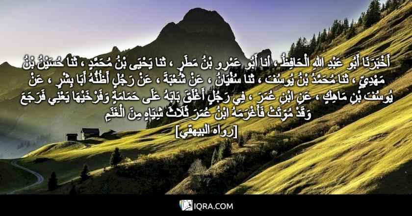 أَخْبَرَنَا أَبُو عَبْدِ اللهِ الْحَافِظُ ، أنا أَبُو عَمْرِو بْنُ مَطَرٍ ، ثنا يَحْيَى بْنُ مُحَمَّدٍ ، ثنا حُسَيْنُ بْنُ مَهْدِيٍّ ، ثنا مُحَمَّدُ بْنُ يُوسُفَ ، ثنا سُفْيَانُ ، عَنْ شُعْبَةَ ، عَنْ رَجُلٍ أَظُنُّهُ أَبَا بِشْرٍ ، عَنْ يُوسُفَ بْنِ مَاهِكٍ ، عَنِ ابْنِ عُمَرَ ، فِي رَجُلٍ أَغْلَقَ بَابَهُ عَلَى حَمَامَةٍ وَفَرْخَيْهَا يَعْنِي فَرَجَعَ وَقَدْ مُوِّتَتْ فَأَغْرَمَهُ ابْنُ عُمَرَ ثَلَاثَ شِيَاهٍ مِنَ الْغَنَمِ <br> [رواه البيهقي]