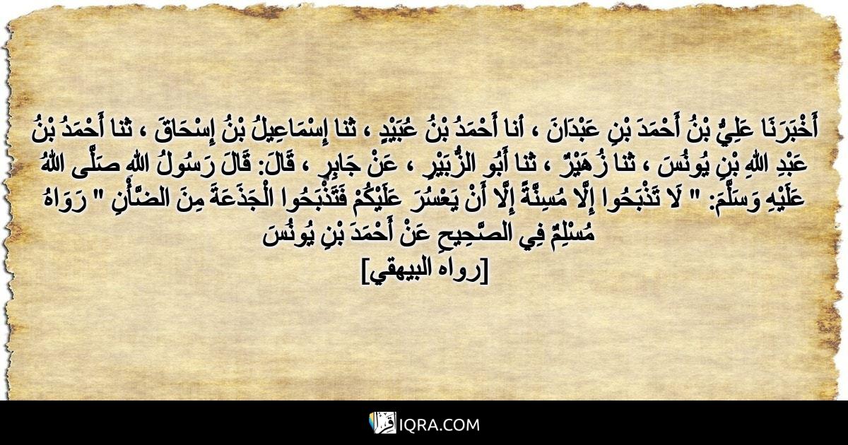"""أَخْبَرَنَا عَلِيُّ بْنُ أَحْمَدَ بْنِ عَبْدَانَ ، أنا أَحْمَدُ بْنُ عُبَيْدٍ ، ثنا إِسْمَاعِيلُ بْنُ إِسْحَاقَ ، ثنا أَحْمَدُ بْنُ عَبْدِ اللهِ بْنِ يُونُسَ ، ثنا زُهَيْرٌ ، ثنا أَبُو الزُّبَيْرِ ، عَنْ جَابِرٍ ، قَالَ: قَالَ رَسُولُ اللهِ صَلَّى اللهُ عَلَيْهِ وَسَلَّمَ: """" لَا تَذْبَحُوا إِلَّا مُسِنَّةً إِلَّا أَنْ يَعْسُرَ عَلَيْكُمْ فَتَذْبَحُوا الْجَذَعَةَ مِنَ الضَّأْنِ """" رَوَاهُ مُسْلِمٌ فِي الصَّحِيحِ عَنْ أَحْمَدَ بْنِ يُونُسَ <br> [رواه البيهقي]"""
