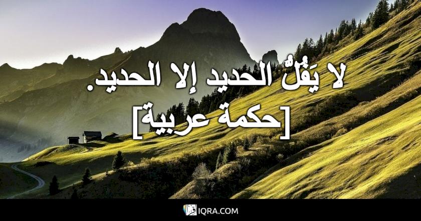 لا يَفُلُّ الحديد إلا الحديد. <br> [حكمة عربية]